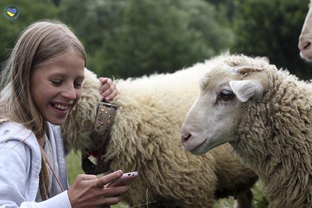 lera_ja_lammas